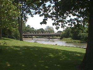 View of River from Park