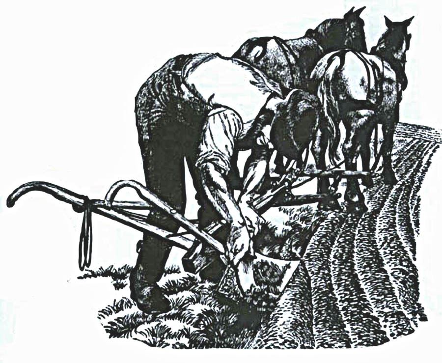 Farmer with plow